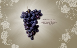 Fruit of the Spirit_1